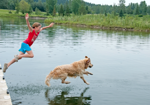 kind hond water iStock-183046563