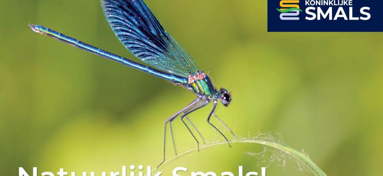 Kon-Smals-linkedin-libelle-2